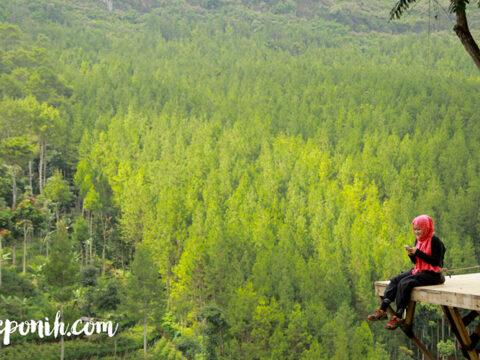 Camping the lodge maribaya , maribaya , the lodge, tour bandung, wisata lembang